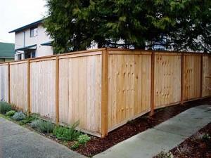 carlstrom_fence